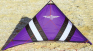 cross-kites-speedwing-x1-violet